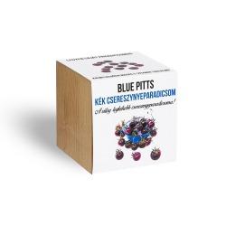Kék színű GMO mentes, organikus paradicsom - ajándék növény fa kaspóval